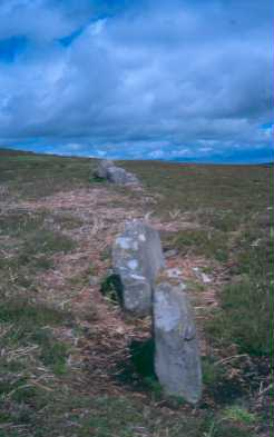 Stone alignment at Lordenshaw, Hesleyhurst. Photo by Northumberland County Council.