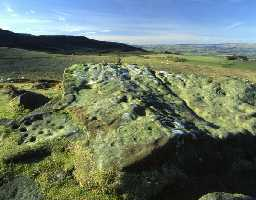 Cup and ring marked stones, Lordenshaws (Copyright © Don Brownlow)