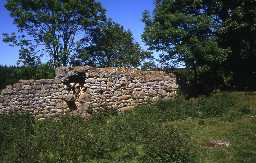 Ruined bastle at Healey, Nunnykirk. Photo by Peter Ryder.