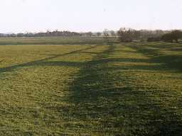 Ridge and furrow fields at Benridge. Photo by Harry Rowland.