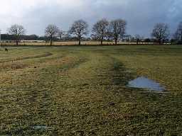 Medieval ridge and furrow around Netherwitton. Photo by Harry Rowland.