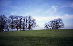 Site of Widdrington Castle. Photo by Northumberland County Council.