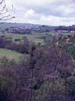 View across Allendale.