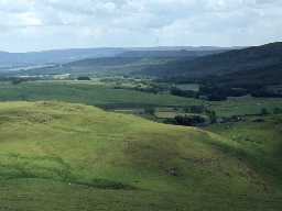 Landscape near Alwinton. Photo by Harry Rowland.