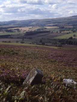 View over Cartington Hill.