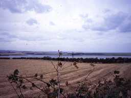 View across farmland near Budle Bay. Photo Northumberland County Council.