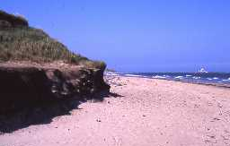 Low Hauxley beach and Coquet Island. Photo by Northumberland County Council.