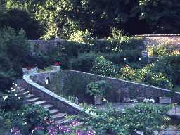 Wallington walled garden. Photo by Harry Rowland.
