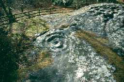 Roughting Linn cup and ring marked stone.  Photo by Northumberland County Council.