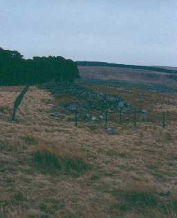 Bellshiel Law long cairn. Photo by Northumberland County Council.