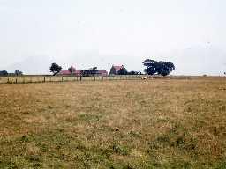 Lowick Northfield Farm. Photo by Harry Rowland.