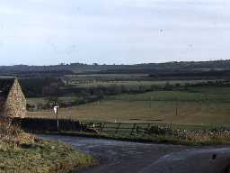 Traces of ridge and furrow fields at Rugley. Photo by Harry Rowland.