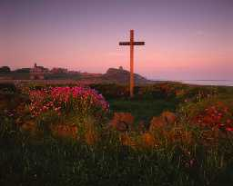 St Cuthbert's Isle, Holy Island (Copyright © Don Brownlow)