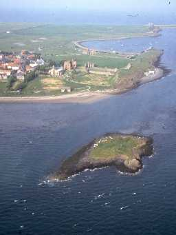 St Cuthbert's Isle from the air, with Holy Island behind. Photo by Mick Aston, 2000.