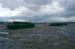 Wrecks in Warkworth Harbour. Photo by Glasgow University.