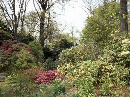 Gardens at Howick Hall. Photo by Harry Rowland.