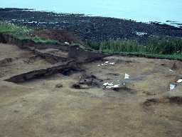 Excavations at Howick Haven. Photo by Alastair Barclay.