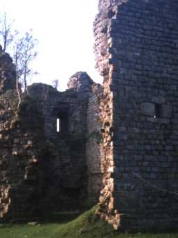 Detail of Thirwall Castle. Photo by Northumberland County Council.