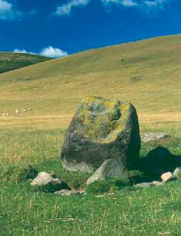 One of the stones at Hethpool stone circle, Kirknewton. Photo by Northumberland County Council.