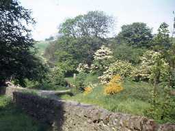 Roman milestone near Vindolanda. Photo by Harry Rowland.