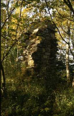 Ruins of Staward Pele, Haydon. Photo by Peter Ryder.