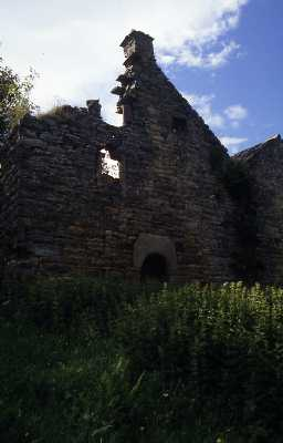 Ruins of a bastle-type house at Rowantree Stob, Allendale. Photo by Peter Ryder.