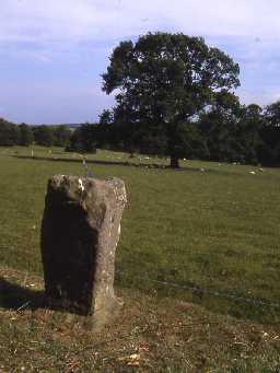 Roman altar at Newbrough Lodge.