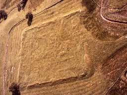 Risingham (Habitancum) Roman fort from the air. Copyright Reserved: Museum of Antiquities, Newcastle upon Tyne.