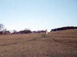 Standing stone near Swinburne Castle. Photo by Harry Rowland.
