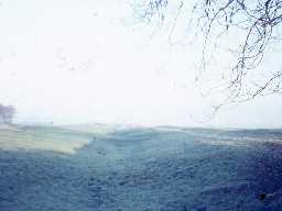Medieval ridge and furrow near Raylees. Photo by Harry Rowland.