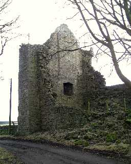 Manor House Remains at Priory Farm, Muggleswick 2003