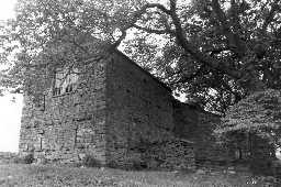 Barn, Yard Wall & Shed to E & S of Levy Pool Farmhouse  © DCC 1985