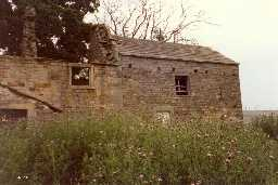 Barn, Yard Wall & Shed to E & S of Levy Pool Farmhouse  © DCC 1989