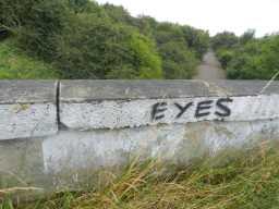 Graffiti on bridge 22/07/16