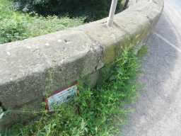 Photograph of plaque at bridge over Broomside Cutting 2016