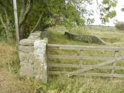 Gate next to Old Bridge over Nor Beck, 2016 2016