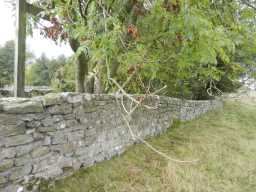 Wall on other side of the top of Old Bridge over Nor Beck, 2016 2016