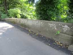 Photograph of wall at Starling Bridge, Stanley 2016