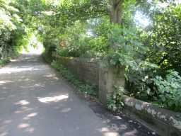 Photograph of wall and road over Starling Bridge, Stanley 2016
