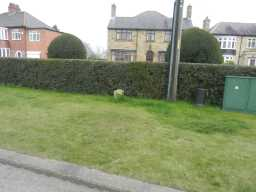 County Council Marker Stone at 77 Staindrop Road view from road towards houses 2017