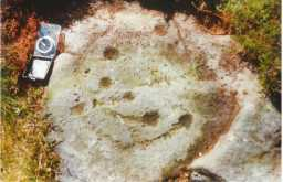 Photograph of a cup-and-ring-marked boulder, Osmaril Gill, Barningham Moor, Teesdale 1980-1997