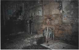 Interior of The Demesnes 20.10.1997